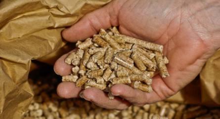 ramonage poele a granules niort